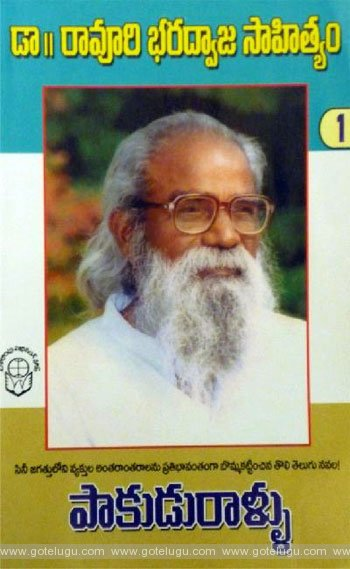 Book Review - Paakudu Rallu