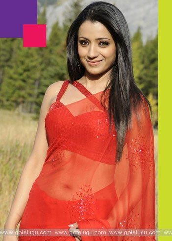 trisha marriage soon