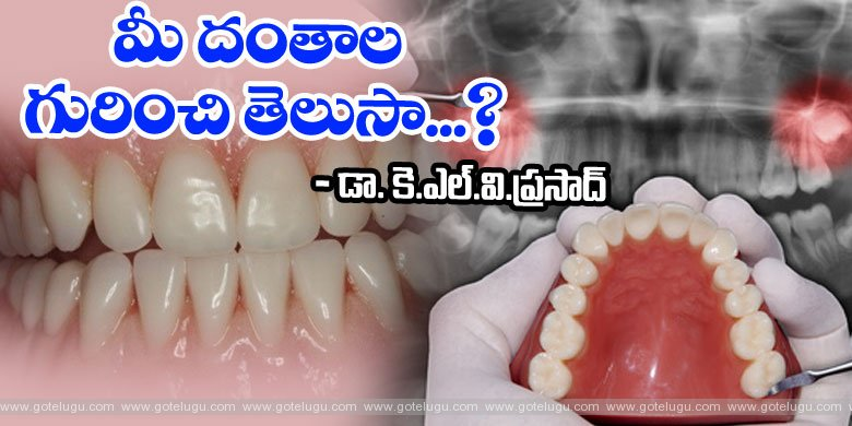 Learn about your .. teeth .. !!