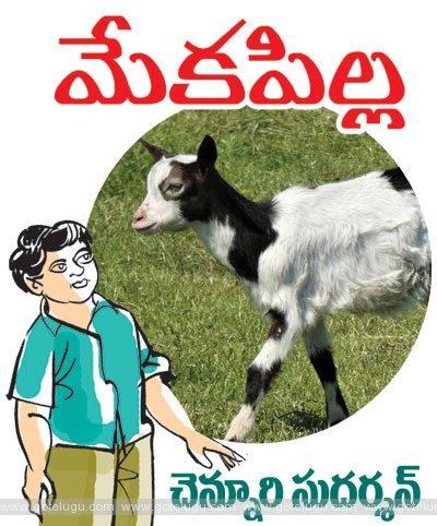 Cub goat