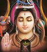 Pancharaamalu by Jayalakshmi Jampani