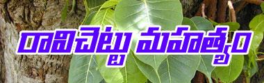 banyan tree importence