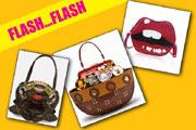 flash flash