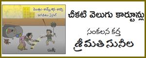 Cheekati Velugu Cartoonlu